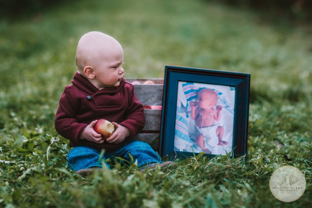 Family Photography at Robbs Apple Tree Farm Brockport, NY