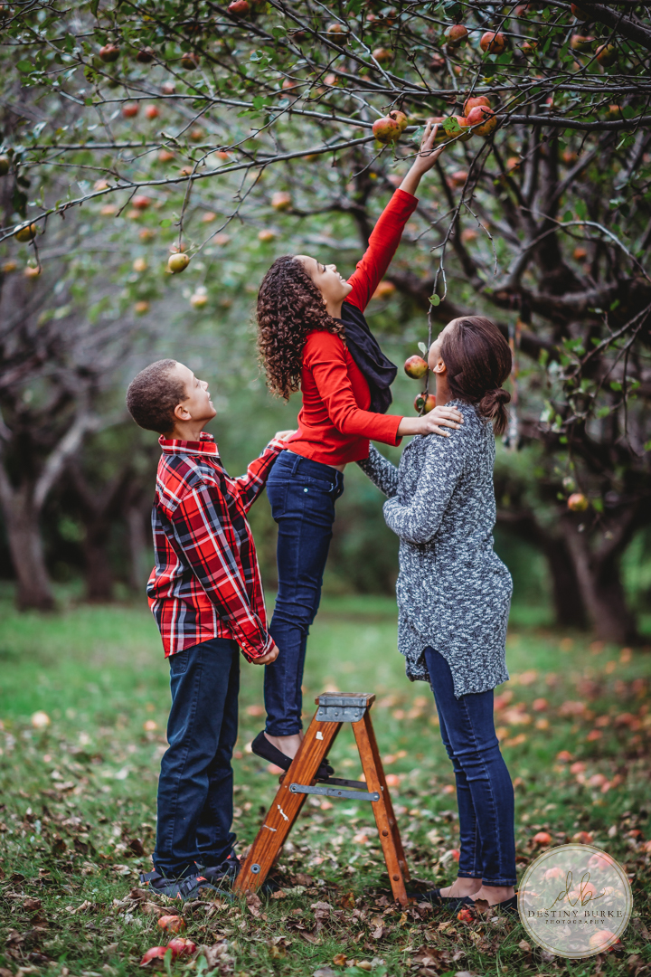 Family Photography at at Stanley Apple Tree FLINT