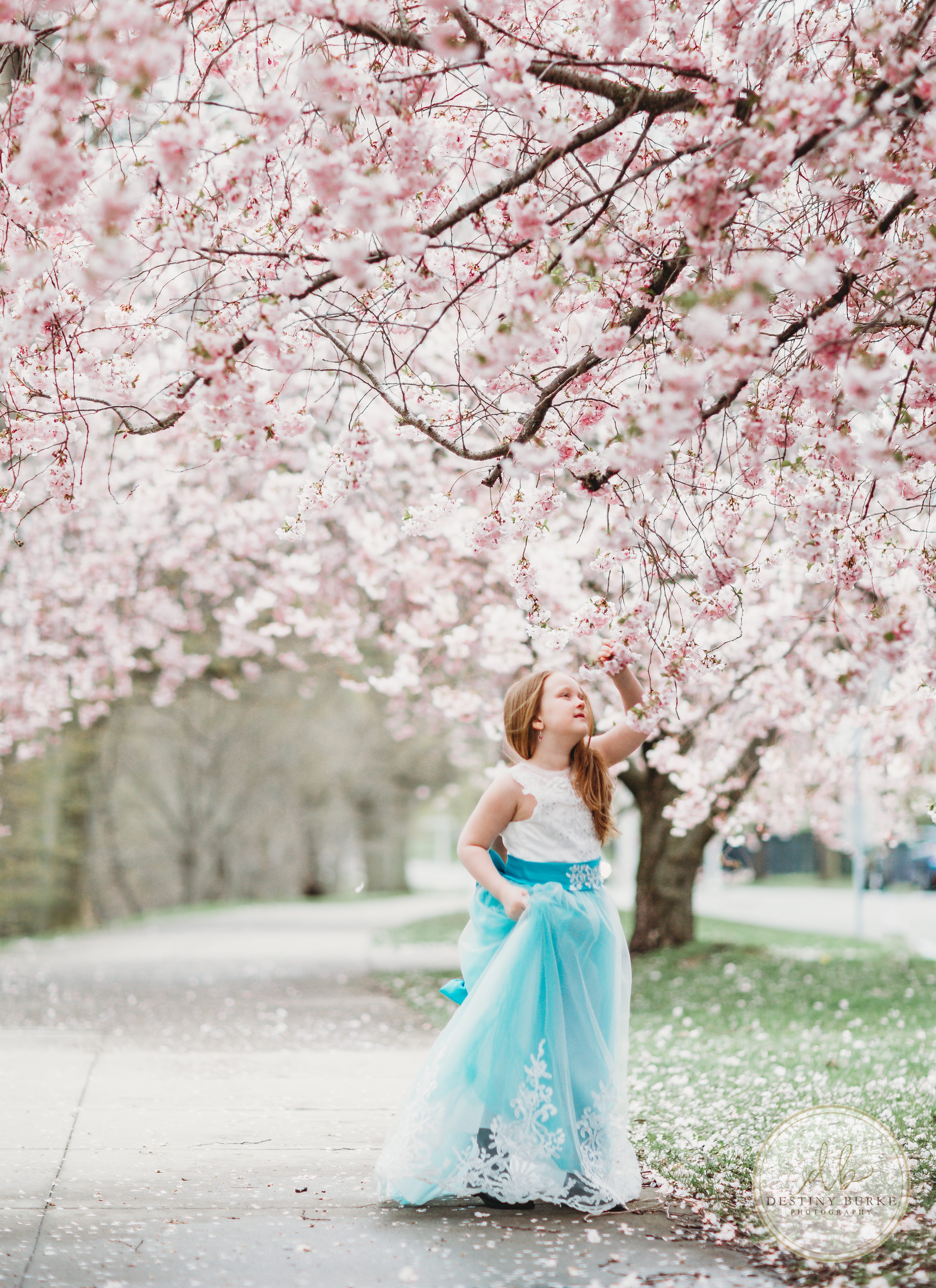 Little Girl in Cherry Blossoms Rochester, NY Photography