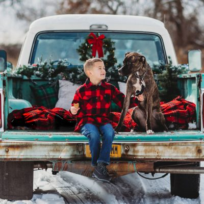 Christmas, truck, mini, sessions, family , puppy