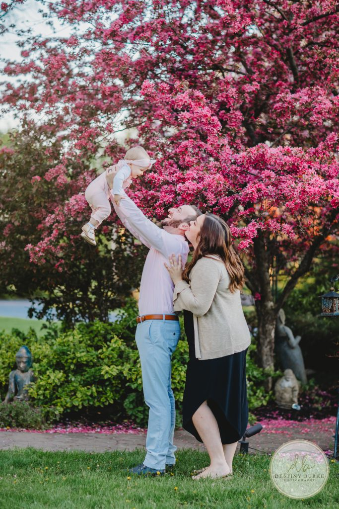 Family, Session, Photography, Pose, Pink, Trees, Crab apple
